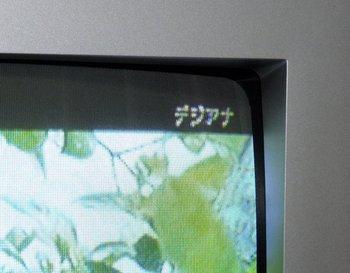 DSCF0996.JPG